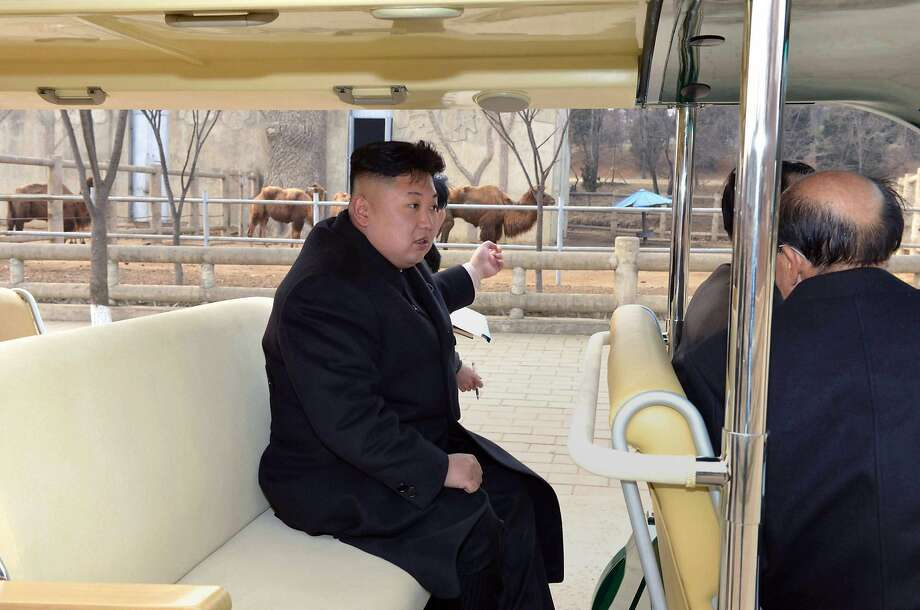 Dictator on safari: North Korean leader Kim Jong-Un points at a camel while visiting Pyongyang's Central Zoo, which is undergoing a major renovation. Photo: KCNA Via KNS, AFP/Getty Images