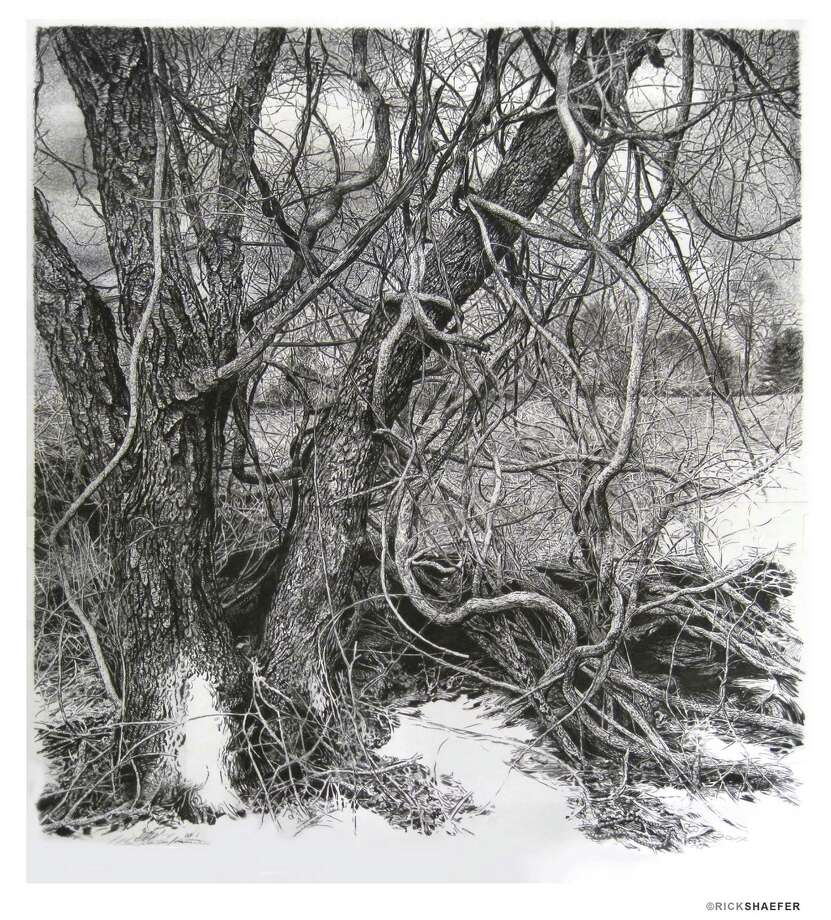 """Vines (Merwins field)"" by Fairfield artist Rick Shaefer is on view in ""Black-white-color-light: The Art of Rick Shaefer & The Sun as Art: NASA Photographs"" at the Stamford Museum & Nature Center. Photo: Contributed Photo / Connecticut Post Contributed"