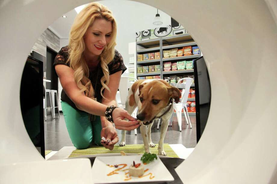 FILE - In This Jan. 2, 2014 file photo, store co-owner, Janene Zakrajsek feeds a dog a gourmet meal at the Pussy & Pooch Pet Lifestyle Center store in Beverly Hills, Calif. An industry spokesman said Americans spent an all-time high of $55.7 billion on their pets in 2013 and will creep close to $60 billion this year on Thursday, March 13, 2014. (AP Photo/Nick Ut, File) ORG XMIT: LA101 Photo: Nick Ut / AP
