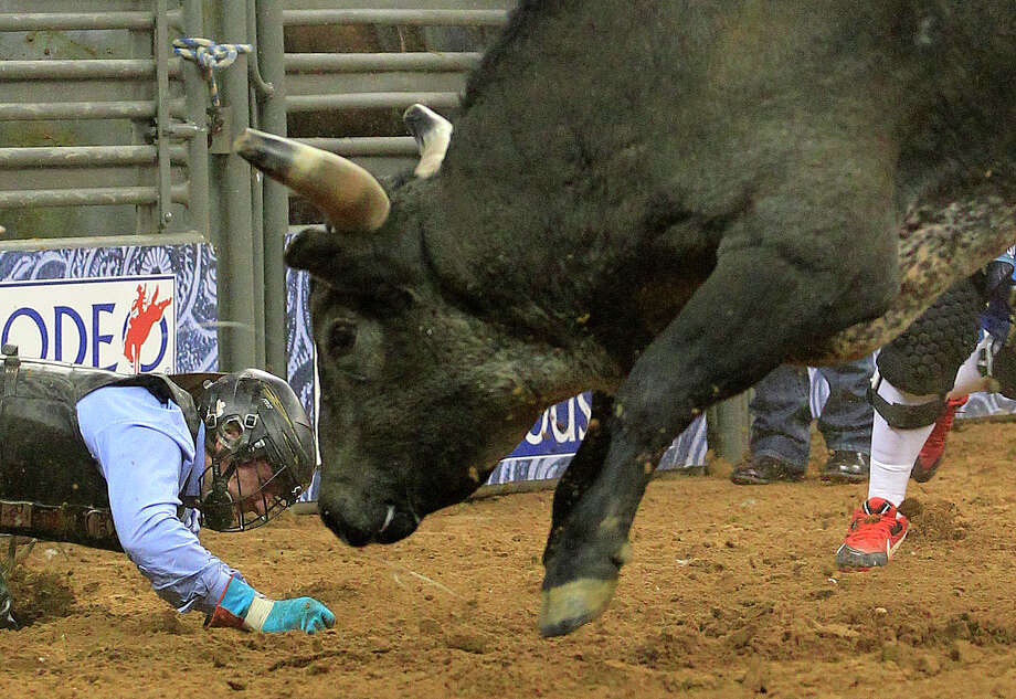 Cody Teel gets face to face with a bull during the first round of the BP Super Series lV where he leads the Bull Riding event at Rodeo Houston in Reliant Stadium Thursday, March 13, 2014, in Houston. Photo: Johnny Hanson, Houston Chronicle / © 2014  Houston Chronicle