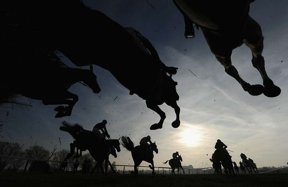 CHELTENHAM, ENGLAND - MARCH 13:  Runners and riders jump the third last in the Fulke Walwyn Kim Muir Challenge Cup Handicap Chase at Cheltenham Racecourse on March 13, 2014 in Cheltenham, England.  (Photo by Mike Hewitt/Getty Images) *** BESTPIX *** Photo: Mike Hewitt, Getty Images