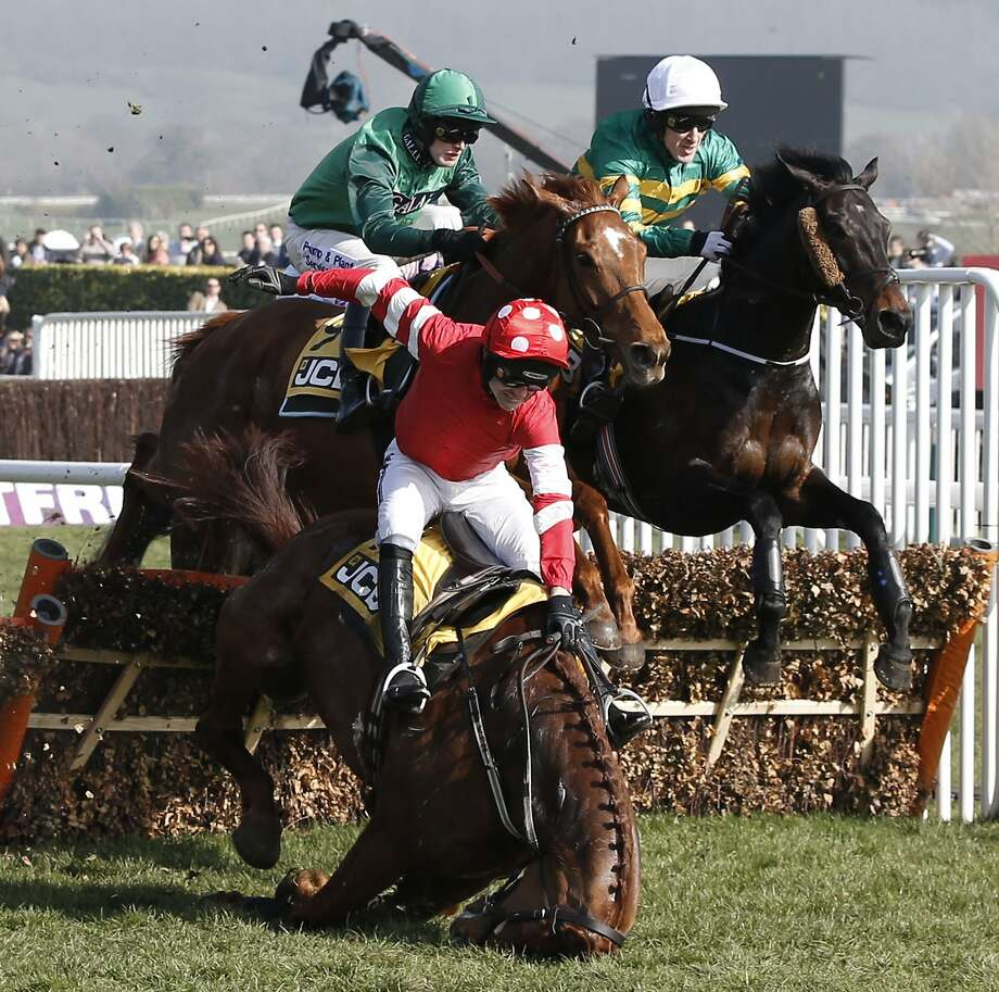 Steeplechase crash: Abbyssial tumbles over an obstacle during the JCB Triumph Hurdle race at the Cheltenham Festival horse racing meeting in Gloucestershire, England. The horse was OK, but jockey Ruby Walsh broke his arm when he was thrown out of the saddle. Photo: Adrian Dennis, AFP/Getty Images