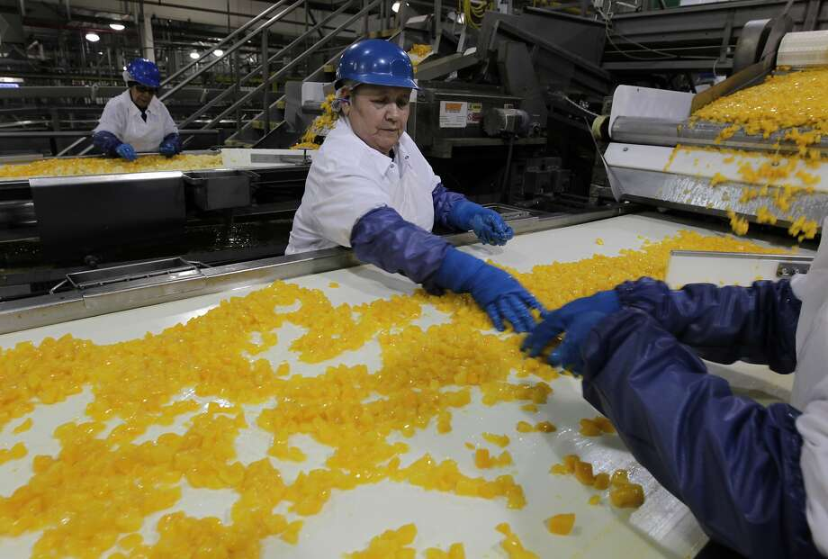 Alicia Gomez inspects diced peaches, above, and below with Sylvia Lopez, as the fruit is readied for packaging into fruit cups at Del Monte's Modesto canning plant. The firm has agreed to market healthy snacks to parents and kids. Photo: Paul Chinn, The Chronicle