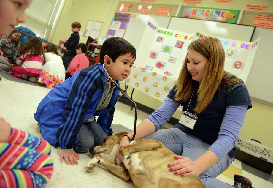 Matteus Abastillas, 6, of Southington, listens to the heartbeat of Gabby with some help from Dr. Erin Fleming, of Westport Animal Hospital, in the Junior Vet workshop which was part of the Minds in Motion event held at Jonathan Law High School in Milford Conn. on Saturday March 15, 2014. Minds in Motion give kids from K-8th grade the opportunity to take part in stimulating, faced-paced, and interactive workshops. Photo: Christian Abraham / Connecticut Post