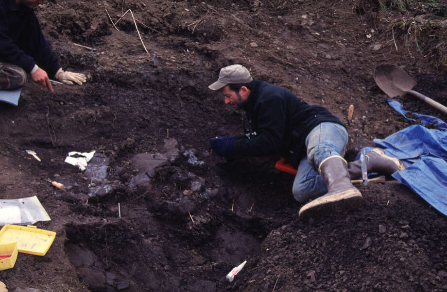 "In this undated photo provided by the Perot Museum of Nature and Science in Dallas, Dr. Tony Fiorillo is shown at the excavation site on Alaska's North Slope where paleontologists from the Perot Museum report they have discovered a new species of dinosaur that's described as akin to a pygmy Tyrannosaurus rex. Perot earth sciences curator Fiorillo and fossil preparatory Ronald Tykoski say the reptile is a ""pint-sized cousin"" to the T. rex., weighing just a half-ton and coming in about half the length of its ferocious relative. Photo: Uncredited, AP / Perot Museum of Nature and Science"