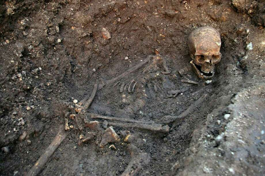 "This is an undated file photo released by the University of Leicester, England, of remains found underneath a car park in September 2012 in Leicester, which have been declared ""beyond reasonable doubt"" to be the long lost remains of England's King Richard III, missing for 500 years. Distant relatives of England's King Richard III on Thursday March 13, 2014 will  launch their High Court Battle over where to rebury the 15th-century monarch's remains. The remains of Richard _ who was killed in battle in 1485 _ were found in a Leicester parking lot. The government has given Leicester Cathedral permission to rebury the king, but his relatives want him buried in the northern England city of York. (AP Photo / University of Leicester, file)  Photo: University Of Leicester, AP / A20132013"