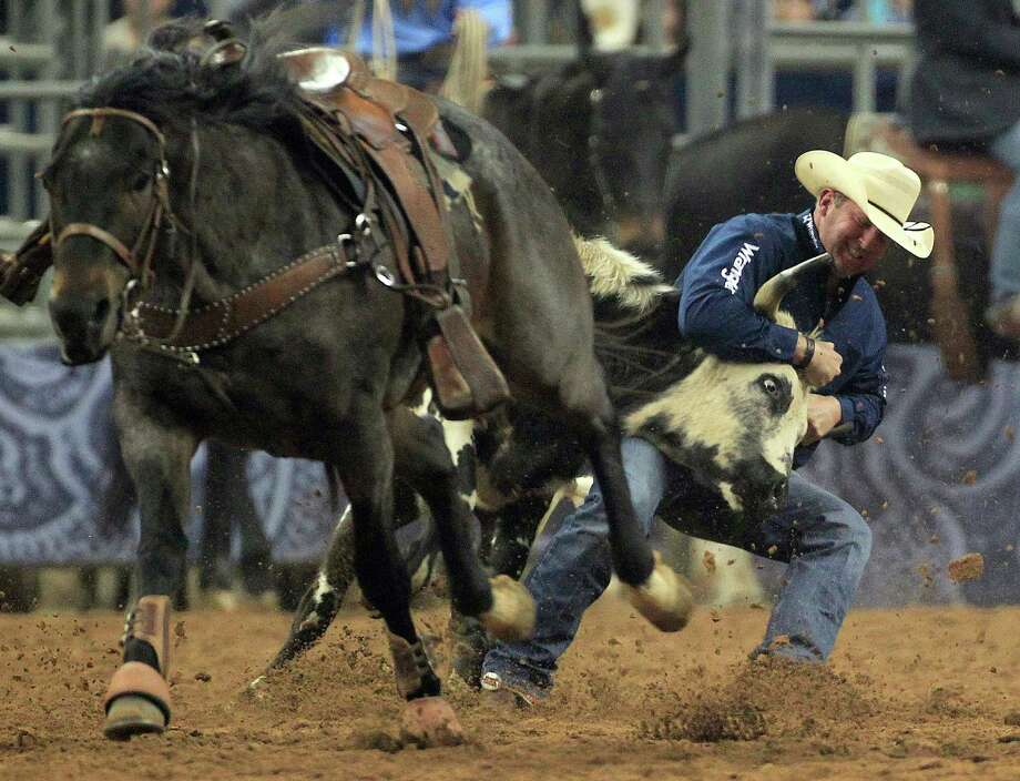 Tom Lewis took down a steer in 5.2 seconds to put him in first place in the Steer Wrestling event during BP Super Series V, Round 1 at Reliant Stadium  Sunday, March 16, 2014, in Houston. Photo: Johnny Hanson, Houston Chronicle / © 2014  Houston Chronicle