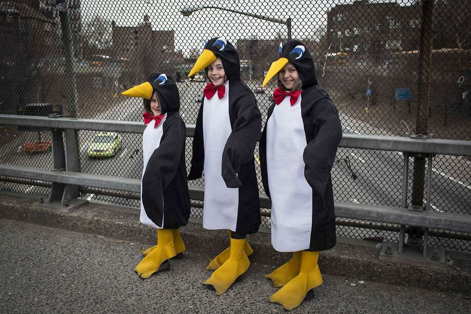 Girls dressed as penguins stand on an overpass during the Jewish holiday of Purim in the South Williamsburg suburb of New York March 16, 2014. The carnival-like Purim holiday is celebrated with parades and costume parties to commemorate the deliverance of the Jewish people from a plot to exterminate them in the ancient Persian empire 2,500 years ago, as recorded in the Biblical Book of Esther. REUTERS/Andrew Kelly (UNITED STATES - Tags: SOCIETY RELIGION) Photo: Andrew Kelly, Reuters