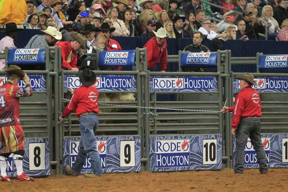 Bull rides at the rodeo seem like they end in a matter of seconds. Here's your chance to see the chaos frame by frame. Photo: Johnny Hanson, Houston Chronicle / © 2014  Houston Chronicle