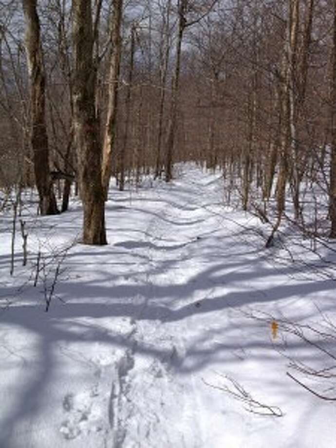 A view of the trail while Sonja Stark was snowshoeing in March on Slide Mountain.  Read more about the hike. Photo: Sonja Stark