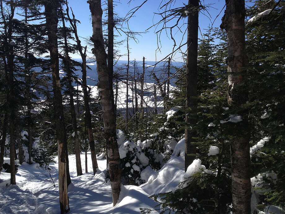 The view through the trees from Blue Mountain.  Read about the hike Photo: Sonja Stark