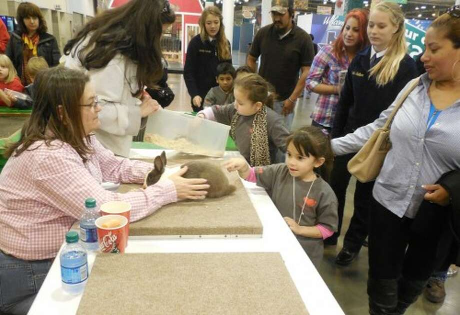 Children pet rabbits, goats, pigs and deer at the Houston Livestock Show and Rodeo Agventure exhibit. Photo: Provided By Small Steps Nurturing Center