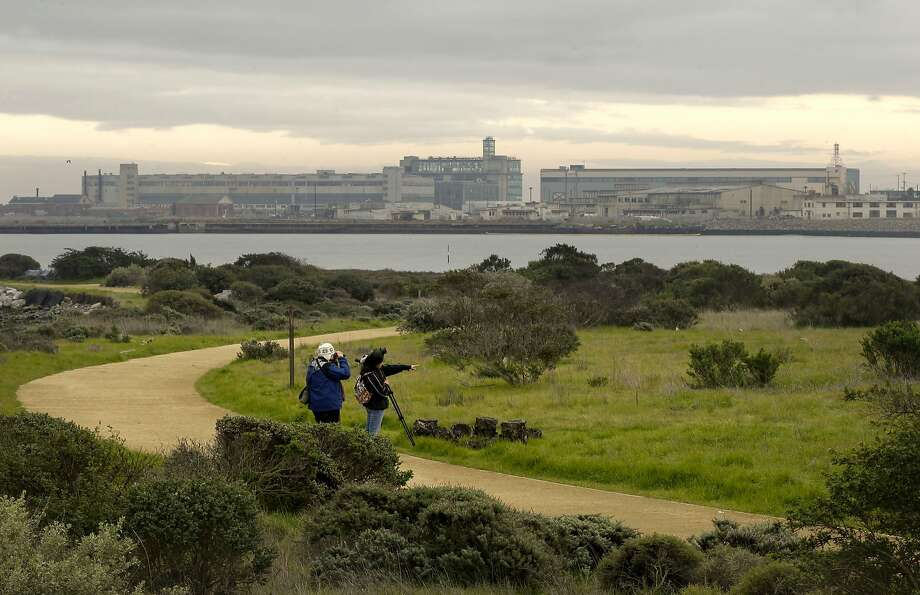 Heron's Head Park, Bayview Hunter's Point