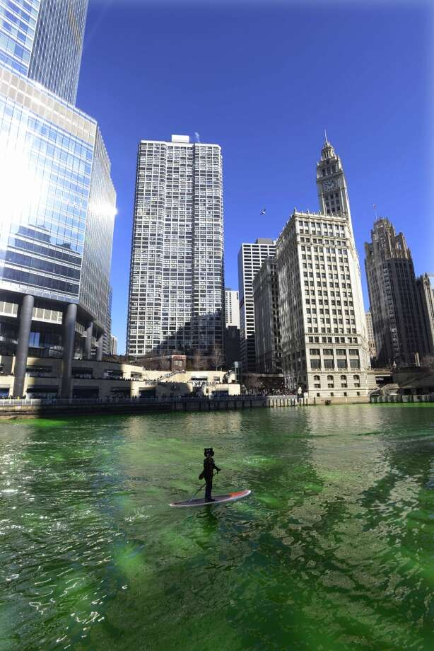 A kayaker floats on the Chicago River after it was dyed green ahead of the St. Patrick's Day parade in Chicago, Saturday, March 15, 2014. (AP Photo/Paul Beaty) Photo: Associated Press