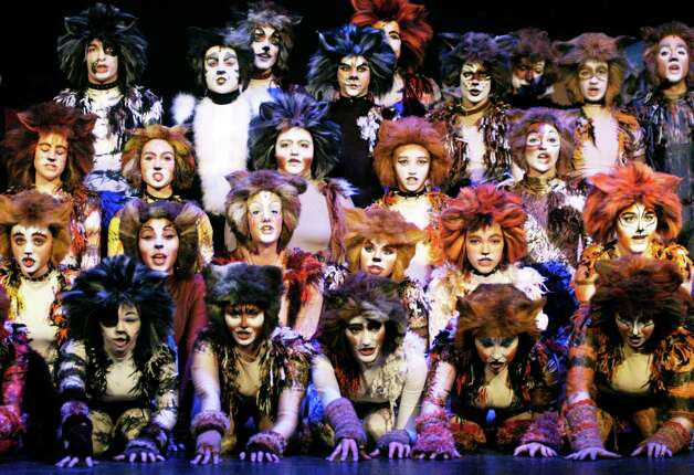 "'Cats'  The all-school student production of Andrew Lloyd Webber's iconic musical, ""Cats,"" will maike its debut Friday, March 21 at New Milford High School. Above, many of the players are seen during an ensemble number. For more photos and the story, including show schedule and ticket information, see S13 Spectrum Images and visit www.newmilfordspectrum.com. Photo: Norm Cummings / The News-Times"