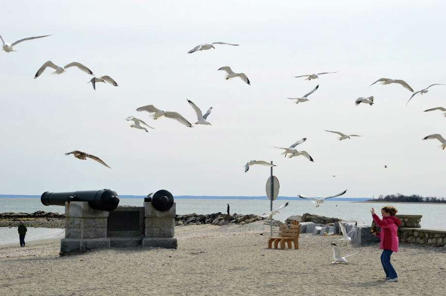 Gulls flock overhead as a girl frolics last week on Compo Beach, for which a new master plan to guide future use is being developed. Photo: Jarret Liotta / Westport News