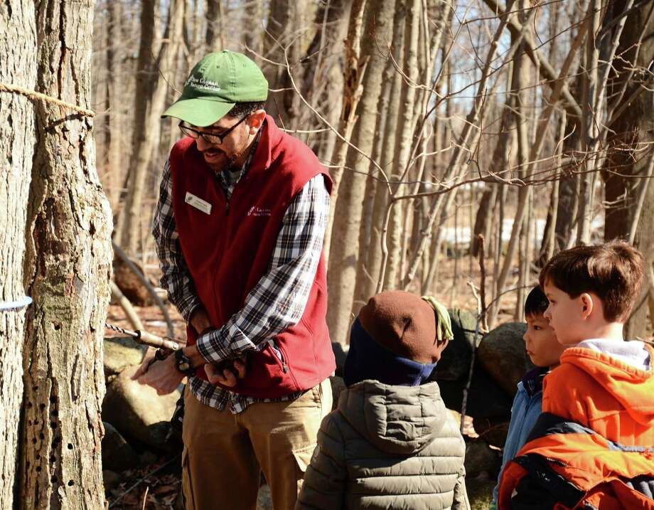 Derick Hips, an environmental educator for the New Canaan Nature Center, at a tree tapping demo Saturday, March 15, 2014. Photo: Nelson Oliveira / New Canaan News