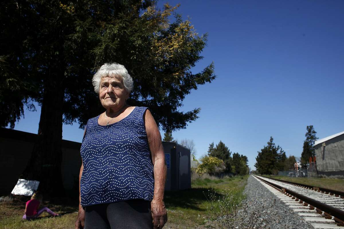 Louise Santero, 86-year old, stands in front of the rare Camera Albino Redwood tree that is the subject of a battle in the community, Monday March 18, 2014, in Cotati, Calif.
