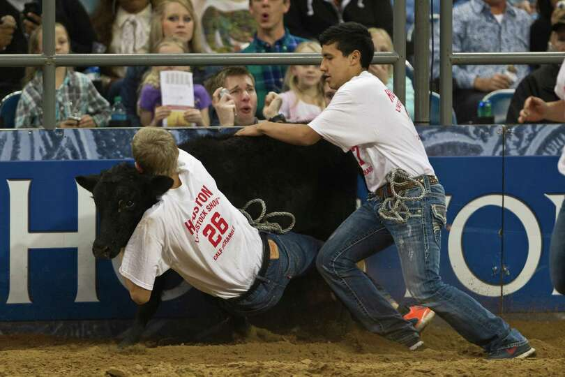 Calf Scramble competition during the Houston Livestock Show and Rodeo, Tuesday, March 18, 2014, in H