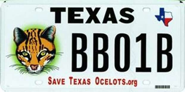 "These Texas license plate benefit ocelots and the U.S. Fish and Wildlife Service. ""We have been working with the Texas Department of Transportation on constructing wildlife crossings, but clearly more needs to be done,"" the wildlife refuge manager said. Photo: U.S. Fish & Wildlife"
