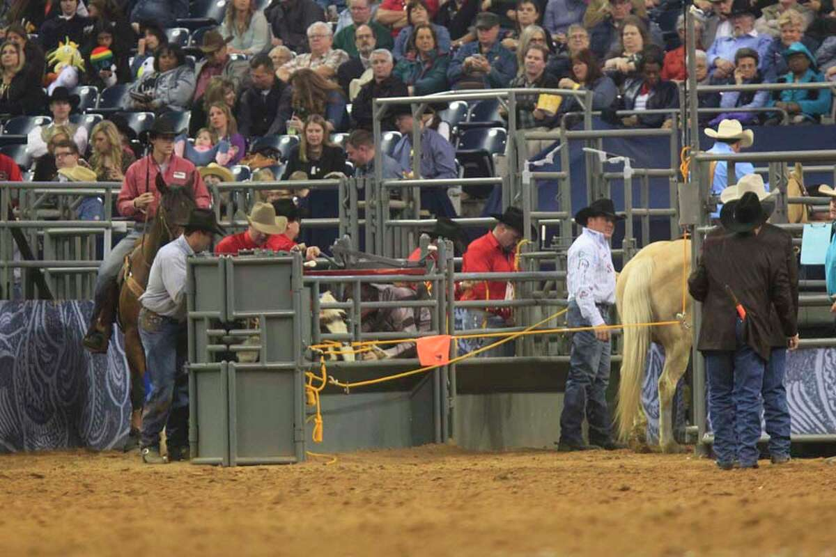 Check out a frame-by-frame view of Juan Alcazar's attempt in RodeoHouston's Steer Wrestling event March 6, 2014. To see a slow-motion view of a chaotic bull ride, click here.