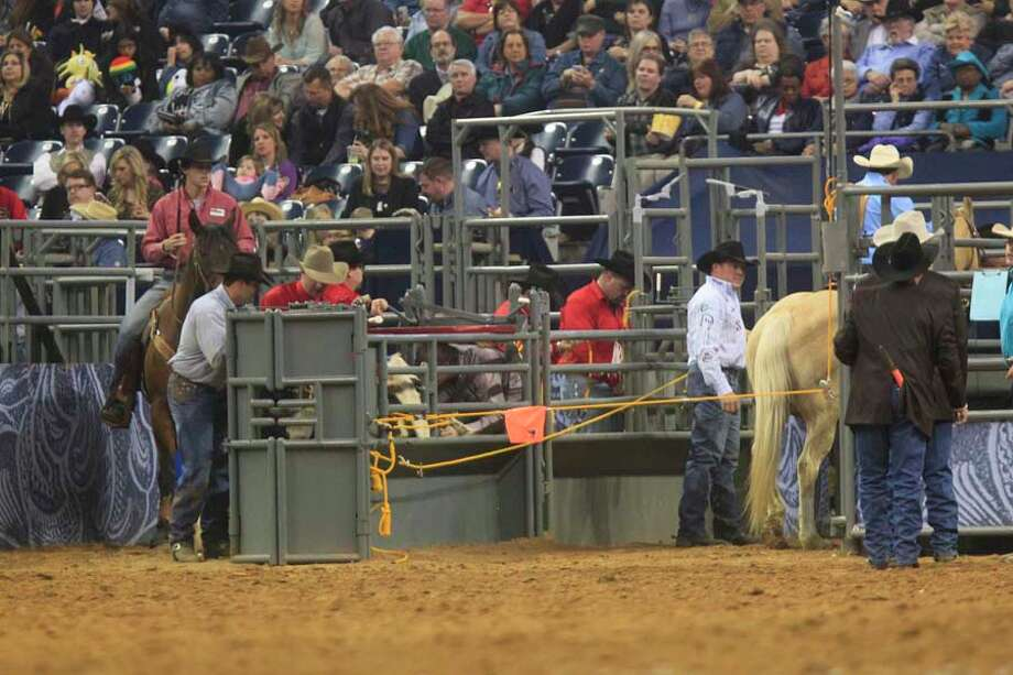 Check out a frame-by-frame view of Juan Alcazar's attempt in RodeoHouston's Steer Wrestling event March 6, 2014. To see a slow-motion view of a chaotic bull ride, click here. Photo: Johnny Hanson, Houston Chronicle / © 2014  Houston Chronicle