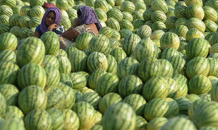 Watermelons are piled shoulder-high for auction at the Gaddiannaram wholesale fruit market on the outskirts of Hyderabad, India. Photo: Noah Seelam, AFP/Getty Images