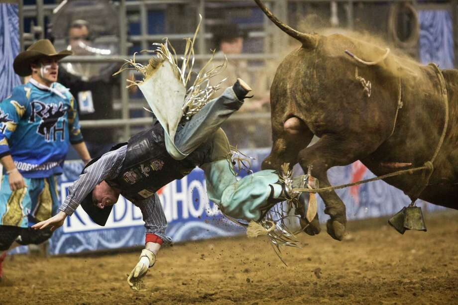 Cody Campbell is thrown off a bull during the BP Super Series Semifinal 1 Bull Riding competition at the Houston Livestock Show and Rodeo at Reliant Stadium on Wednesday, March 19, 2014, in Houston. Photo: Marie D. De Jesús, Houston Chronicle / © 2014 Houston Chronicle