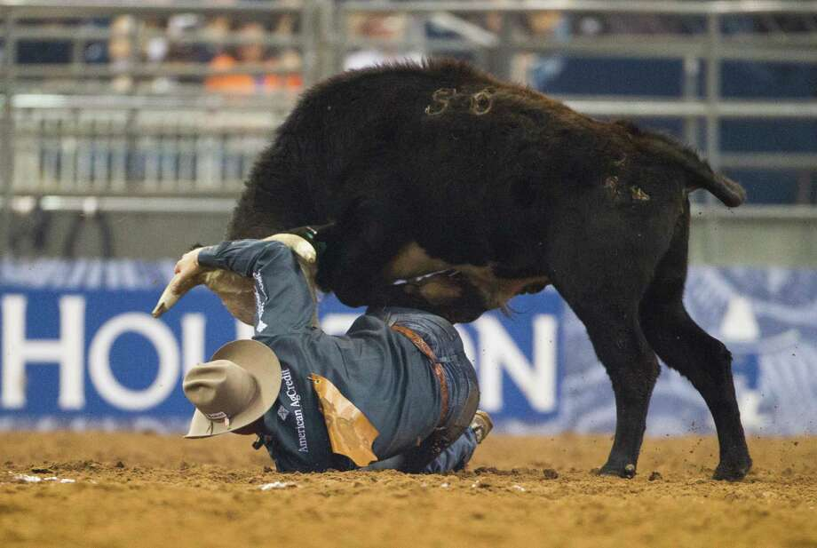 Dakota Eldridge competes in the BP Super Series Semifinal 1 Steer Wrestling competition during Houston Livestock Show and Rodeo at Reliant Stadium on Wednesday, March 19, 2014, in Houston. Photo: Marie D. De Jesús, Houston Chronicle / © 2014 Houston Chronicle
