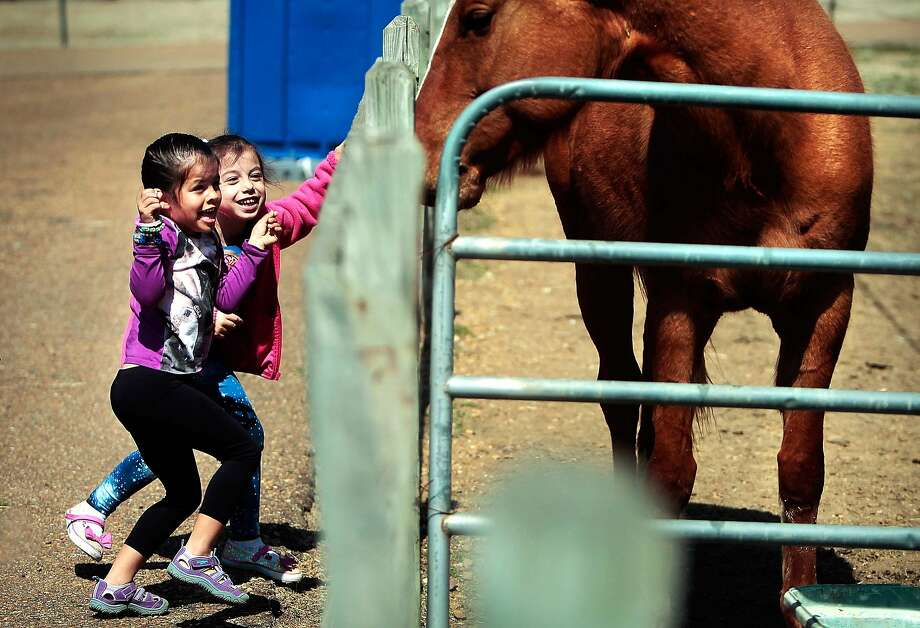 Brianna Lopez, 6, left, and Rosslyn Gutierrez, 4, shy away as one of the Shelby Farms quarter horses looks their way, Wednesday, March 19, 2014, at the Shelby Farms Stables in Memphis, Tenn. The pair took some convincing before they would pet one of the animals during a trip to the park on the last day of winter. (AP Photo/The Commercial Appeal, Jim Weber) Photo: Jim Weber, Associated Press