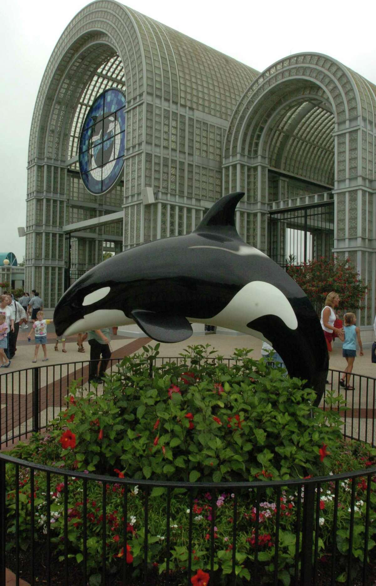 SeaWorld celebrated its 50th anniversary Friday, March 21, and we've compiled memorable moments since the San Antonio park opened 26 years ago. Click through the photos to see the following moments in photos.