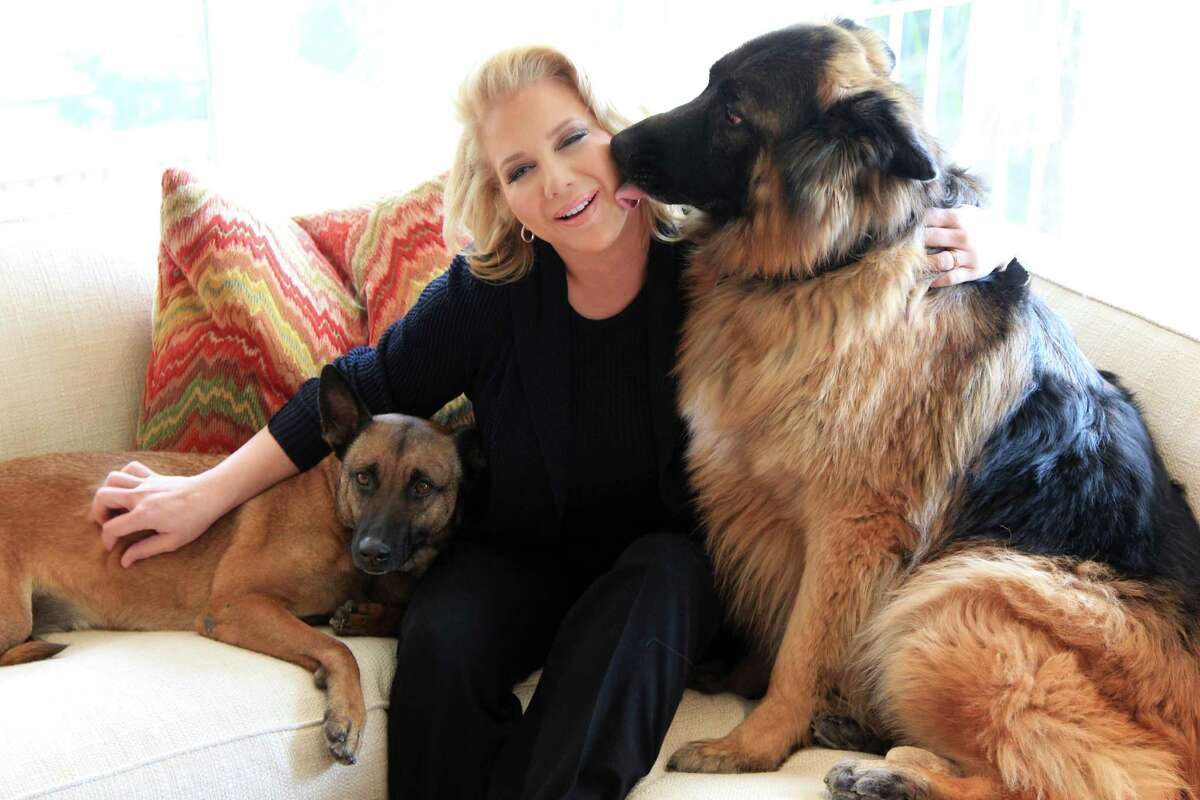 Kristi Schiller, who is photographed with guard dogs Daisy and Johnny Cash, is the Founder and Chair of K9s4COPs and will be featured in Houston Gives for her charity work on Tuesday, Feb. 18, 2014, in Houston. ( Mayra Beltran / Houston Chronicle )
