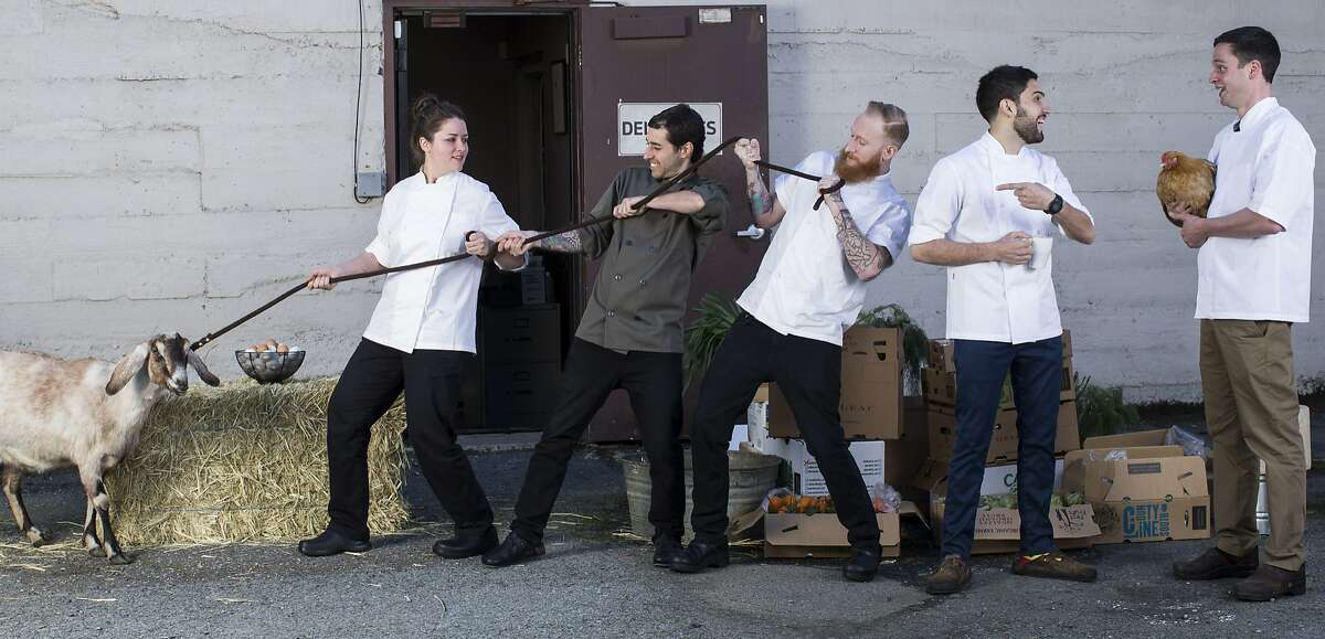 The San Francisco Chronicle's Rising Star Chefs of 2014 Jessica Largey of Manresa, left, James LaLonde of Bocadillos, Timmy Malloy of Local's Corner, Dante Cecchini of Marlowe, and Jared Rogers of Pico are seen on Tuesday, March 11, 2014 in San Francisco, Calif. Produce courtesy of GreenLeaf Animals provided by Little Explorers Mobile Petty Zoo