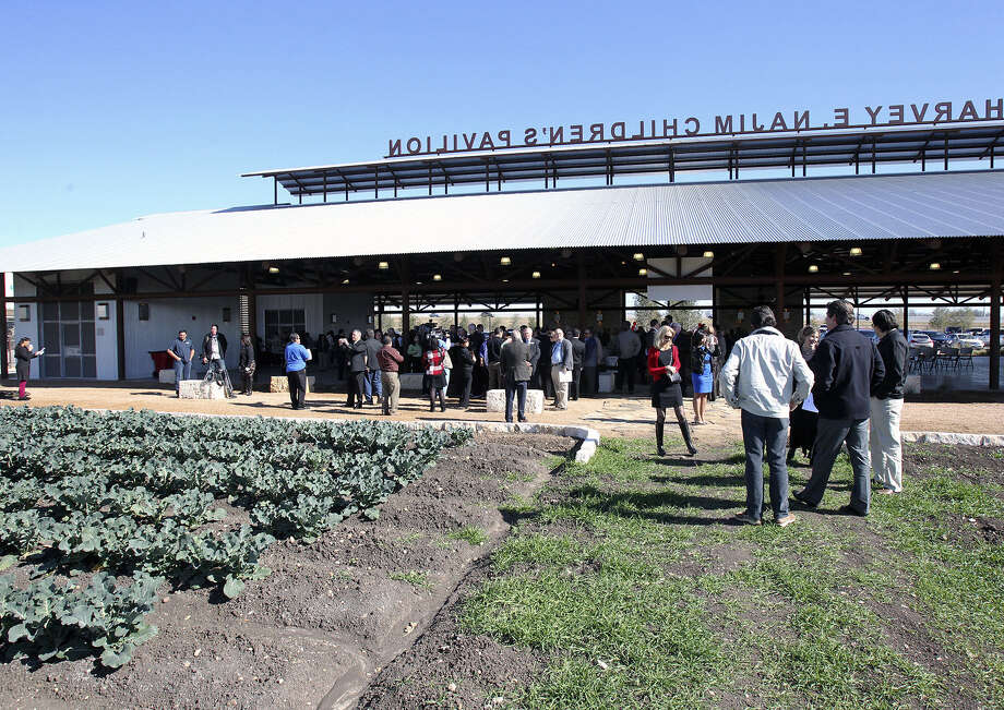The gardens at the San Antonio Food Bank help feed those without enough to eat. In Bexar County, that's 282,210 residents. Photo: Courtesy Photo
