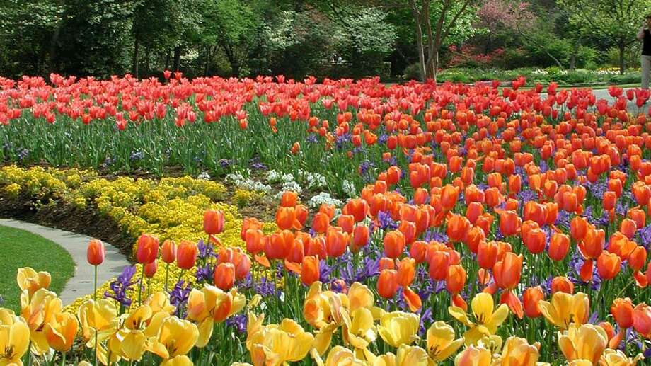 The Dallas Arboretum and Botanical Garden is on the southeastern shore of White Rock Lake at 8525 Garland Road in Dallas. It is home to the internationally acclaimed Rory Meyers Children's Adventure Garden. The arboretum is open daily from 9 a.m. to 5 p.m. Photo: Courtesy Photo, Dallas Arboretum And Botanical Garden