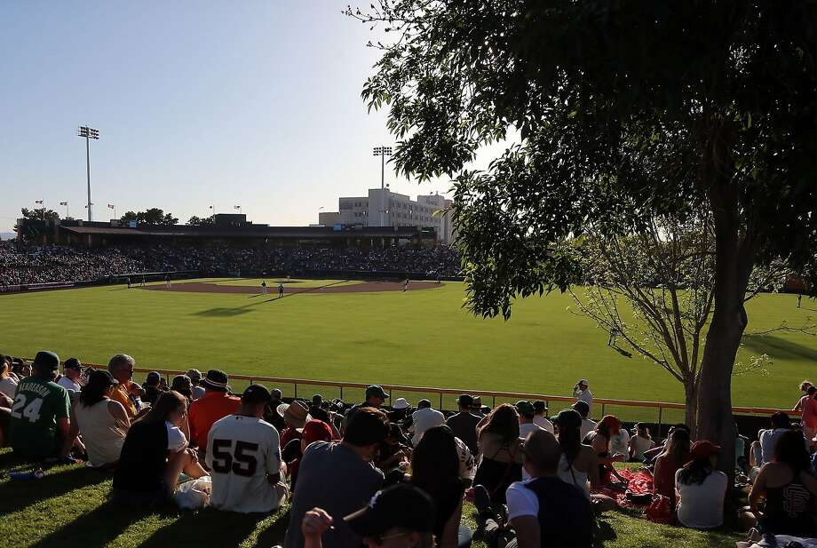 When the A's play the Giants in spring training games, it brings in plenty of tourists - to Arizona. Photo: Christian Petersen, Getty Images