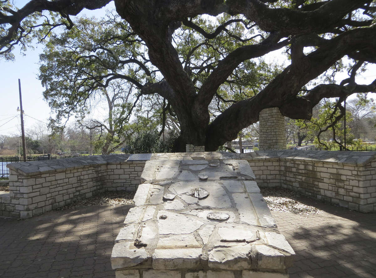 Three bronze markers by Founders' Oak in Landa Park were among eight memorial plaques stolen since last week in New Braunfels. Thieves pried one plaque off the pedestal in the foreground and another, smaller one from the wall in the background, damaging the wall near the 300 year-old tree in the process.