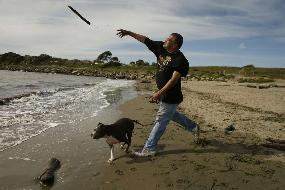 Marco Becerra of Oakland plays with his dogs Wally and Baxter (not pictured) at Albany Beach. Photo: Carlos Avila Gonzalez, The Chronicle