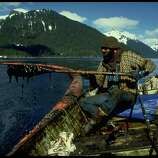 A cleanup worker checking gunk trapped in oil enboomed Prince William Sound after Exxon Valdez oil spill.