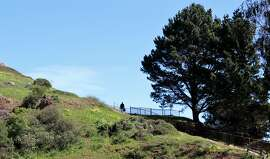 1. Corona Heights Park Museum and Roosevelt ways: Visit this hilltop park where California poppies, mule's ear and other blooming wildflowers enhance panoramic views of the city, San Francisco Bay and Mount Diablo in the distance. The park features easy to challenging hiking trails, a children's playground, areas for canines to romp and tennis courts. http://bit.ly/PUqqTq.
