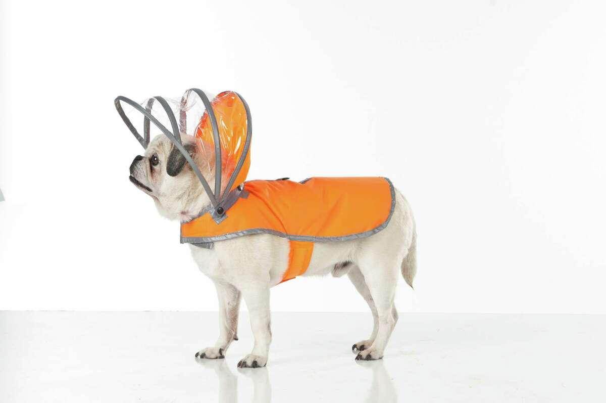 A Push Pushi raincoat with a detachable awninglike hood