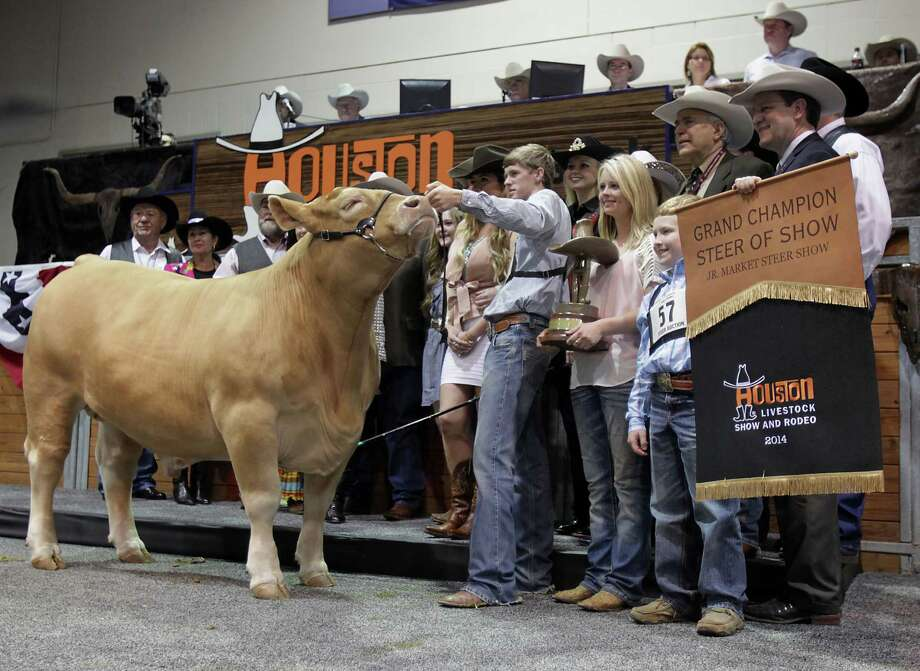 Flint Newman poses for photographs with his Charolais Grand Champion steer along with buyers and show officials during the Houston Livestock Show and Rodeo 2014 Junior Market Steer Auction at Reliant Arena Saturday, March 22, 2014, in Houston. Photo: James Nielsen, Houston Chronicle / © 2014  Houston Chronicle