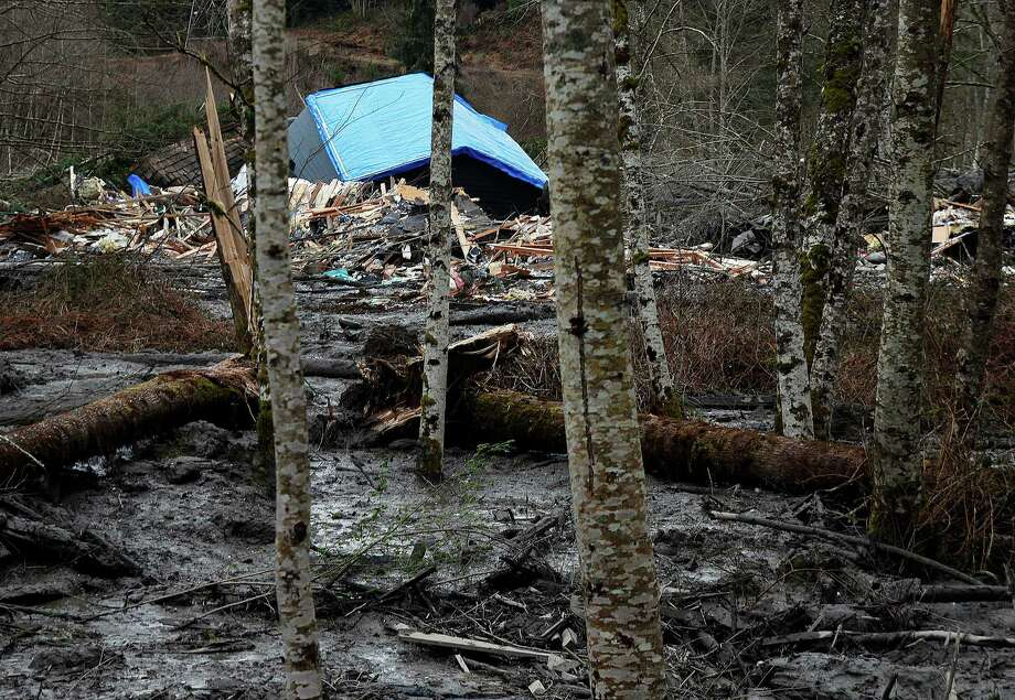 A fatal mudslide brought debris down the Stillaguamish River near Oso, Wash., Saturday, March 22, 2014, stopping the flow of the river and destroying several homes. Photo: Genna Martin, AP / THE HERALD