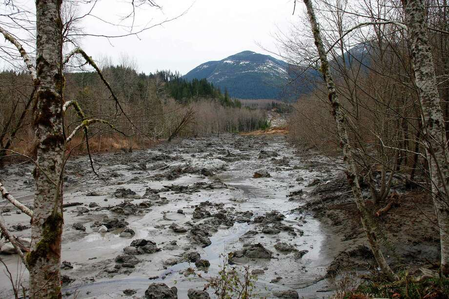 A fatal mudslide brought debris down the Stillaguamish River near Oso Saturday, March 22, 2014, stopping the flow of the river and destroying several homes. Photo: THE HERALD, GENNA MARTIN, AP / The Herald
