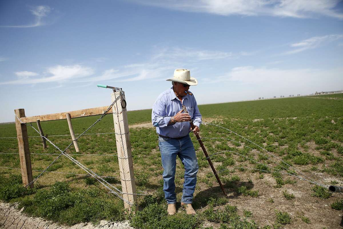 Jack Mitchell closes a gate that was left open on one of the fields at his ranch in Alpaugh, CA, Thursday, March 20, 2014. Farmer Jack Mitchell has sold about 2000 acres of his ranch to the Atwell Island Sanctuary which, through the Bureau of Land Management, is turning former farm land in the San Joaquin Valley back to it's natural pre-agriculture state.