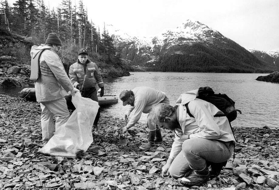Exxon and federal officials surveying shorelines on Knight Island in Prince William Sound in Alaska say they are finding beaches that have recovered from the 1989 Exxon Valdez oil spill and others that still have oil just underneath the surface, May 15, 1991. Photo: Steven L. Nelson, AP / AP