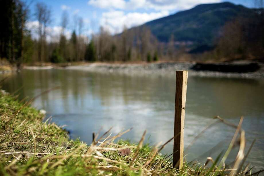 Twenty-three year Oso, Wash. resident Mark Headrick utilized sticks to keep track of water levels in the shoreline of the Stillaguamish River Sunday, March 23, 2014, near Oso, Wash. Authorities say more than 18 people are unaccounted for after a massive mudslide killed at least four people and destroyed 30 homes, forcing evacuations from fears of the Stillaguamish River flooding. Photo: JORDAN STEAD, SEATTLEPI.COM / SEATTLEPI.COM