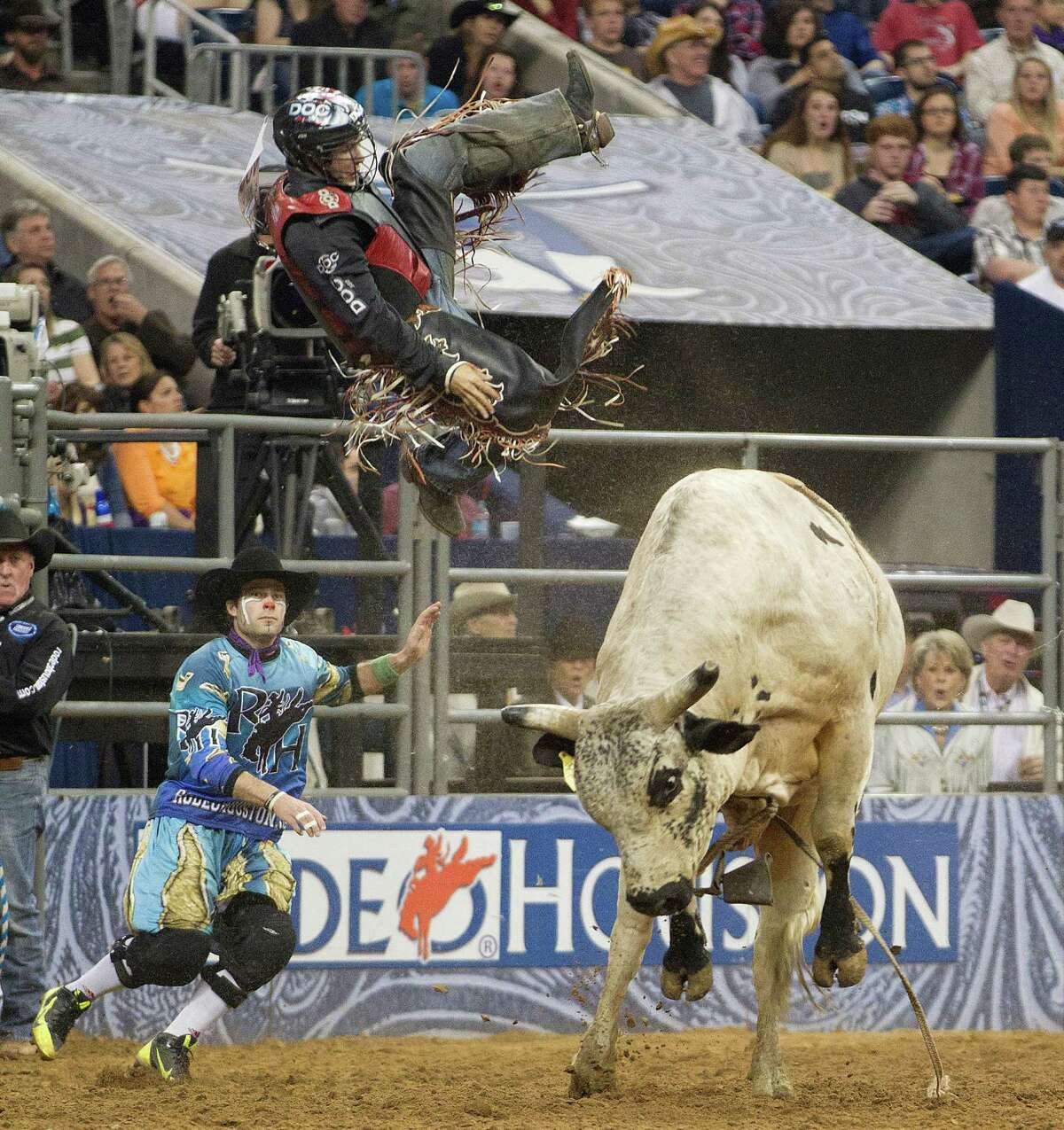 See our picks for who we'd like to see the 2015 Houston Livestock Show and Rodeo