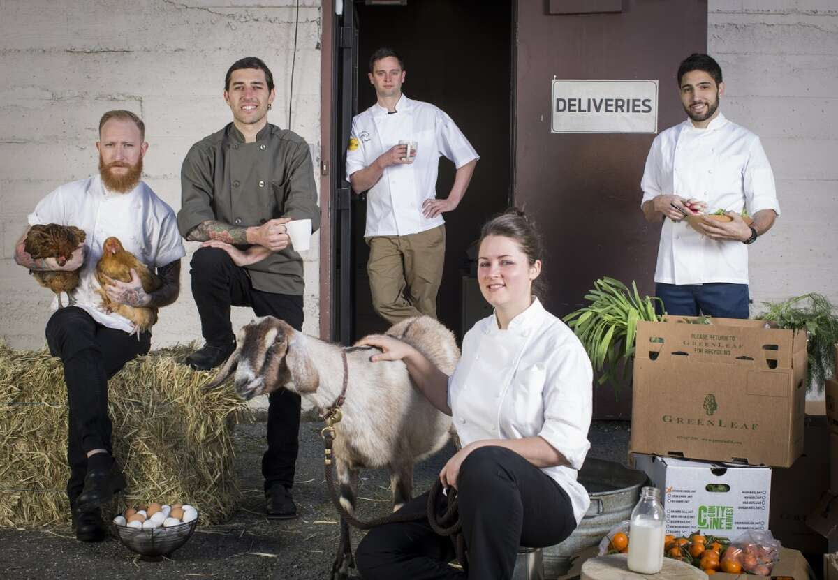 The San Francisco Chronicle's Rising Star Chefs of 2014: Timmy Malloy of Local's Corner, left, James LaLonde of Bocadillos, Jared Rogers of Picco, Jessica Largey of Manresa, and Dante Cecchini of Marlowe.