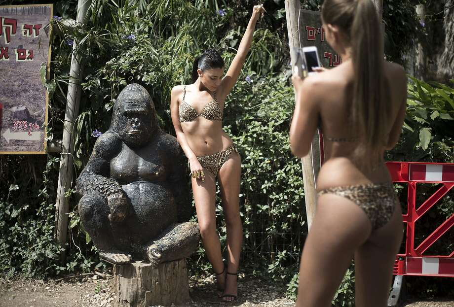 Gorilla my dreams:A model takes a photo of Miss Israel Mor Maman after they showed Intima's leopard-print swimwear on the catwalk at the Tel Aviv Ramat Gan Zoological Center. Photo: Ariel Schalit, Associated Press